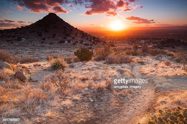 nature trail sunset