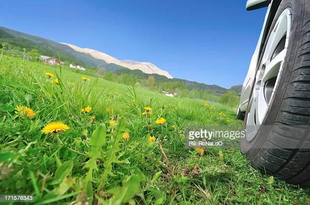 Natur Reisen im Sommer