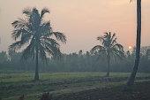 Morning ride through Belthur village