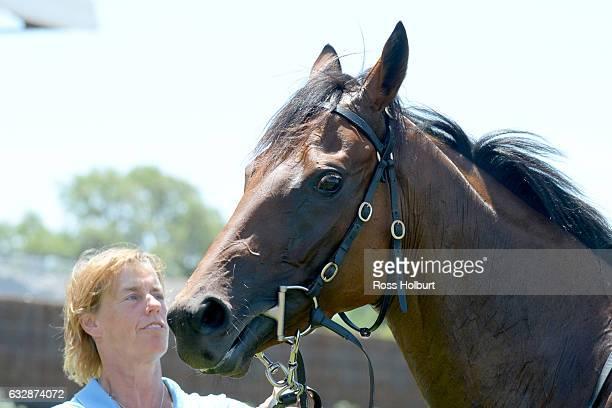 Navagio after winning Doriemus Handicap at Flemington Racecourse on January 28 2017 in Flemington Australia
