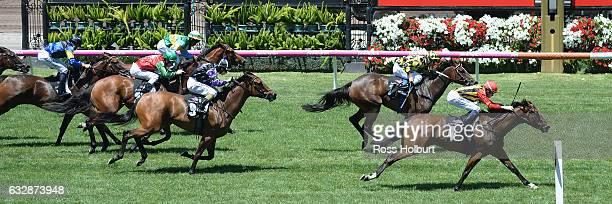 Navagio ridden by Michael Dee wins Doriemus Handicap at Flemington Racecourse on January 28 2017 in Flemington Australia