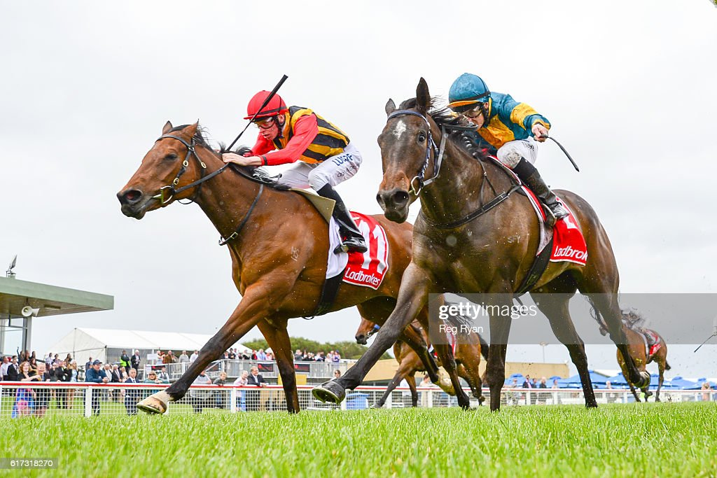 Navagio (NZ) ridden by Michael Dee wins Subway Sale Maiden Plate at Sale Racecourse on October 23, 2016 in Sale, Australia.