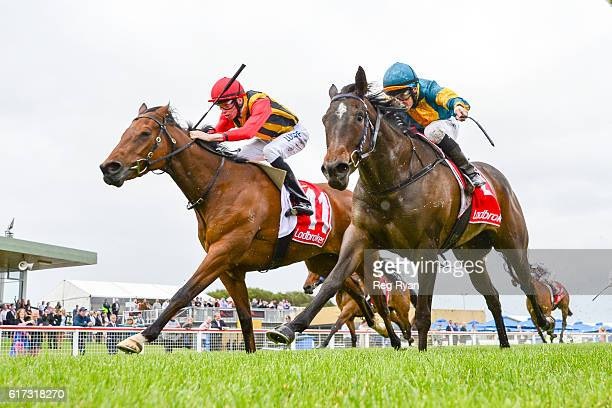 Navagio ridden by Michael Dee wins Subway Sale Maiden Plate at Sale Racecourse on October 23 2016 in Sale Australia