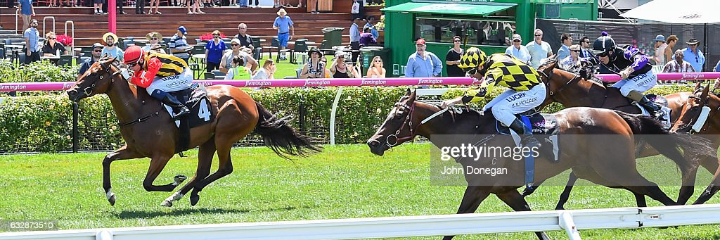 Navagio (NZ) ridden by Michael Dee wins the Doriemus Handicap at Flemington Racecourse on January 28, 2017 in Flemington, Australia.