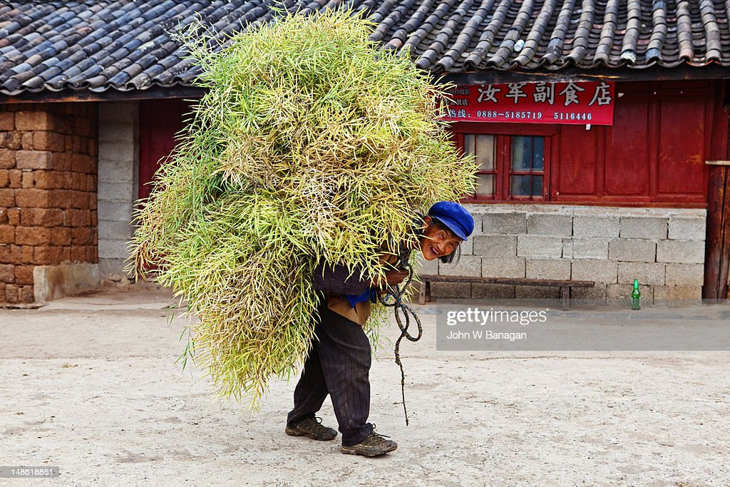 Naxi farmer carrying load at village near Lijiang.