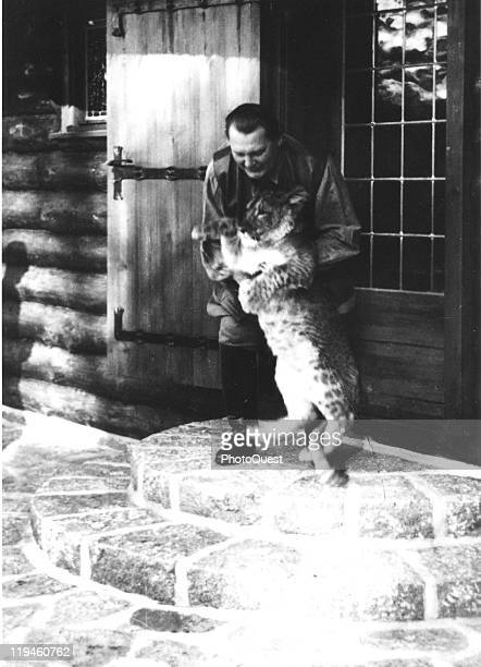 Nazi leader Hermann Goering plays with one of his pet lion cubs on the steps outside his villa Carinhall Prussia 1936
