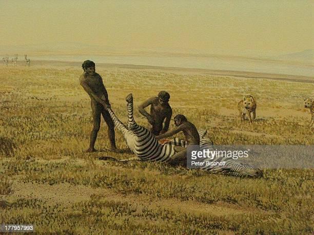 Neandertaler beim Schlachten eines Zebras †berseeMuseum Bremen Deutschland Europa Reise
