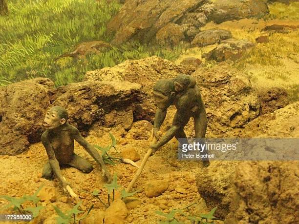 Neandertaler †berseeMuseum Bremen Deutschland Europa Reise