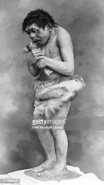 Neanderthal boy figure by Frederick Blaschke before installation in exhibit early 1930s