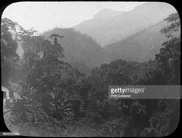 Near Petrópolis Rio de Janeiro Brazil late 19th or early 20th century