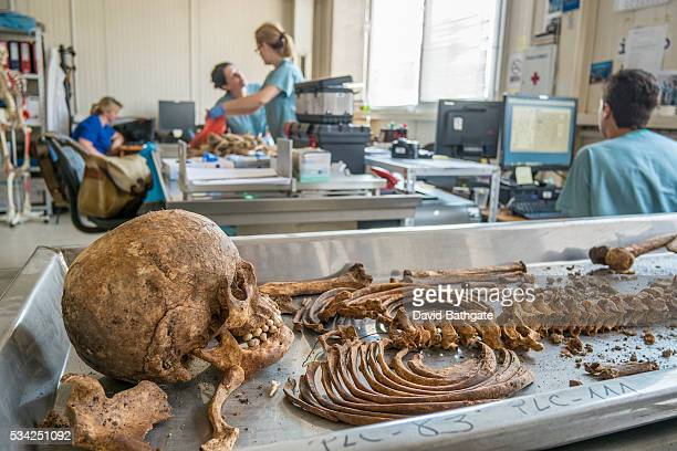 A nearly complete skeleton awaits final identification at the International Commission on Missing Persons lab facility in Tuzla Bosnia and Herzegovina