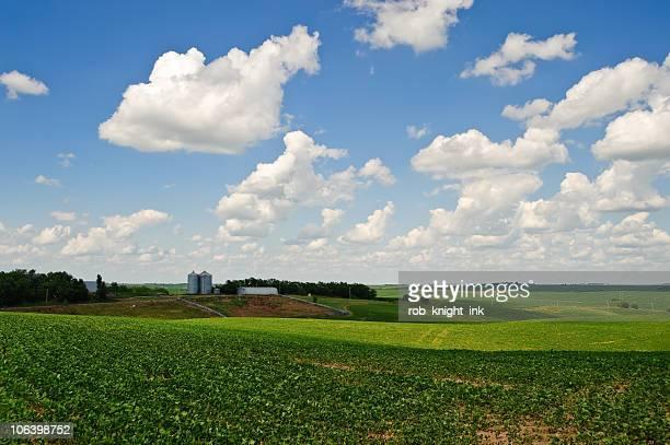 ネブラスカ農業