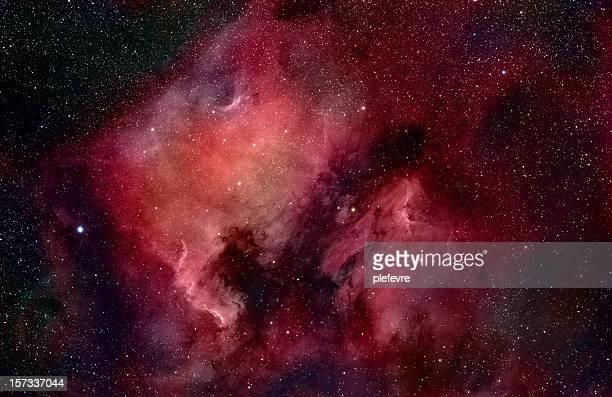 Nebulae in Cygnus