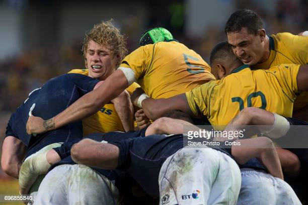 Ned Hanigan of Australia during the International Test match between the Australian Wallabies and Scotland at Allianz Stadium on June 17 2017 in...