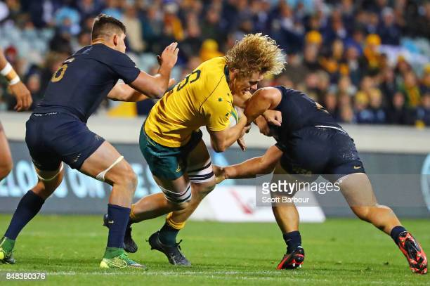 Ned Hanigan of the Wallabies is tackled during The Rugby Championship match between the Australian Wallabies and the Argentina Pumas at Canberra...