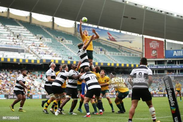 Ned Hanigan of the Wallabies jumps at the lineout during the match between the Australian Wallabies and the Barbarians at Allianz Stadium on October...