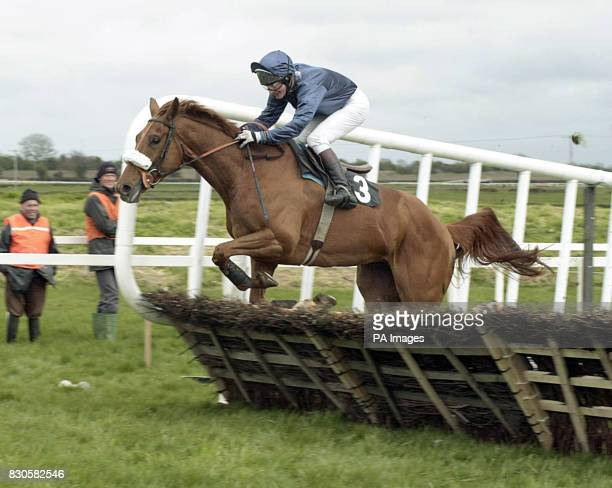 Ned Kelly with Norman Williamson on their way to winning The Winning Fair Champion Novice Hurdle race at the three day Irish Fairyhouse festival