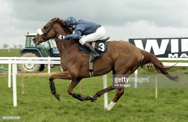 Ned Kelly with Norman Williamson up dashes home to win The Winning Fair Champion Novice Hurdle race at the three day Irish Fairyhouse festival