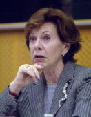Neelie Kroes EU Competition Commissioner addresses the European Parliament Committee on Judicial Affairs in Brussels Belgium on Tuesday November 29...
