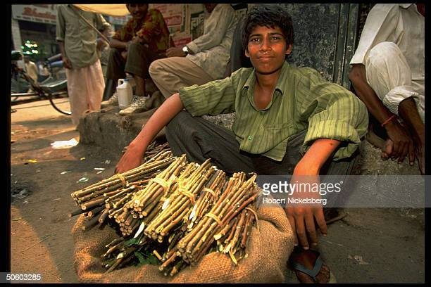 Neem tree sticks selling on streets used as toothbrushes for centuries