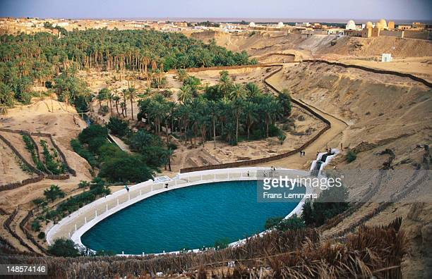 Nefta Oasis with public swimming pool in foreground.