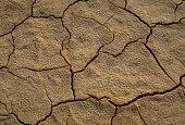 Negev Desert Floor