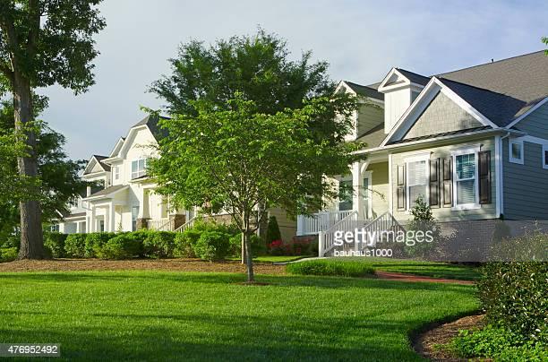 Neighborhood of New, Victorian-Style Homes