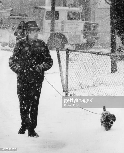 Neither For Man Nor Beast The postThanksgiving onslaught of winter hit motorists left as well as the fourlegged segment of the of the Denver...