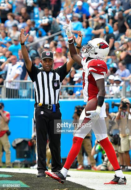 J Nelson of the Arizona Cardinals reacts after scoring a 4th quarter touchdown against the Carolina Panthers during the game at Bank of America...