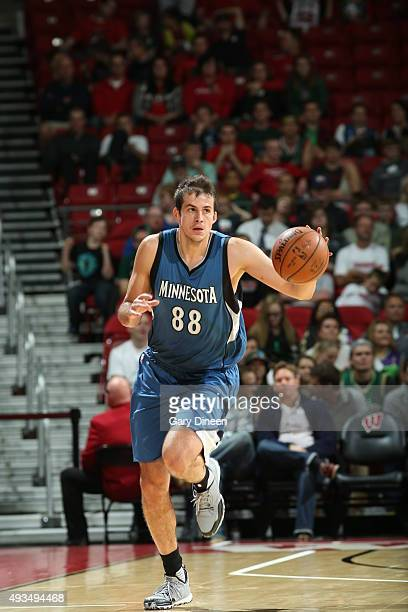 Nemanja Bjelica of the Minnesota Timberwolves brings the ball up court against the Milwaukee Bucks on October 20 2015 at the Kohl Center in Madison...
