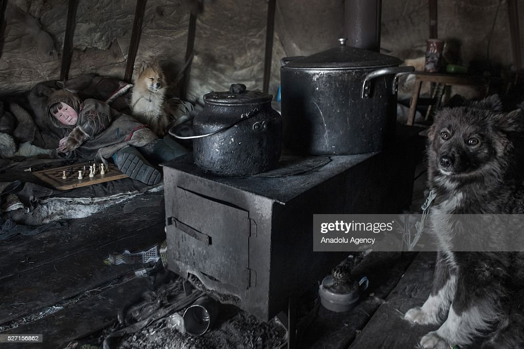 A Nenet kid plays chess as his animals are seen in his shelter at 150 km from the town of Salekhard, Yamalo-Nenets Autonomous Okrug in Russia on May 2, 2016.