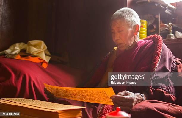 Nepal Himalayas Buddhist nun at the Kharigandentenphelling Monastery in the village of Thamo Solukhumbu Mt Everest reading prayers Tibetan scriptures...