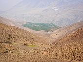 Nepal, Mustang: Green oasis of Khingar village in arid hilly landscape