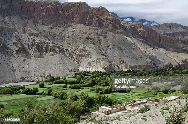 Nepal Upper Mustang Green fields along the route from Kagbeni to Chhusang Kali Gandaki gorge