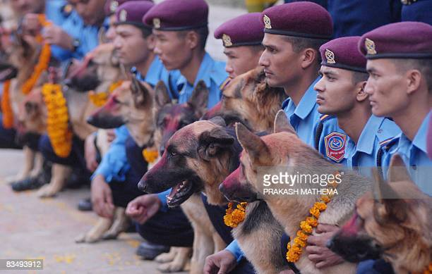 Nepalese police officers pose with their dogs after giving them respects and blessings at the Police Dog training School as part of the Tihar...