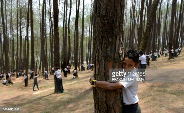 Nepalese school children hug trees in a bid to set a new world record for the largest tree hug as they celebrate World Environment Day in the forest...