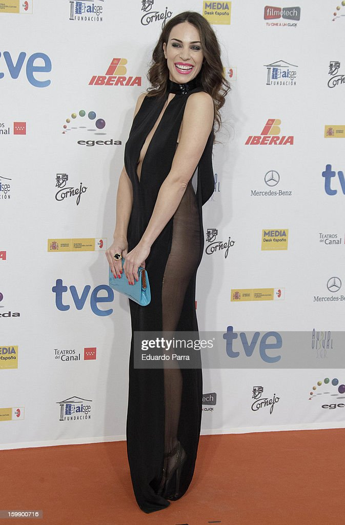 Nerea Garmendia attends Jose Maria Forque awards photocall at Canal theatre on January 22, 2013 in Madrid, Spain.