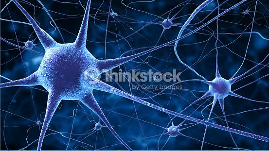 Nerve Cells Stock Photo | Thinkstock