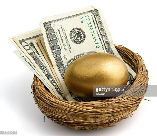 Nest Egg with large bills