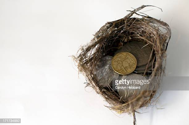 Nest Filled with Australian Coins
