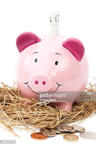 Nesting piggy bank