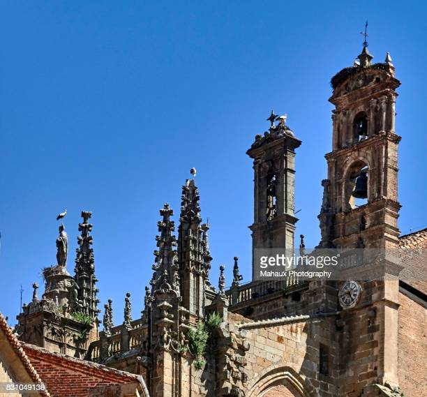 Nests of storks above the gothics towers of the cathedral in Plasencia