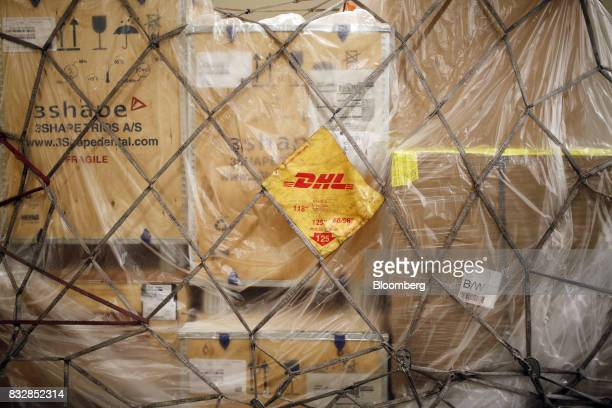 A net holds packages inside a DHL Worldwide Express cargo jet at the company's hub of Cincinnati/Northern Kentucky International Airport in Hebron...