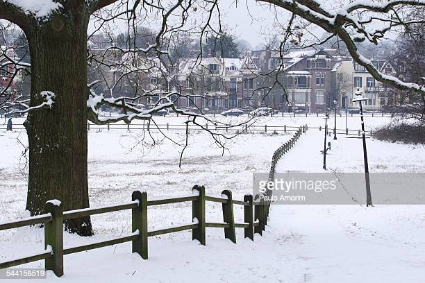 Netherland during Winter