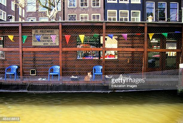 Netherlands Amsterdam Poezenboot Famous Boathouse For Cats