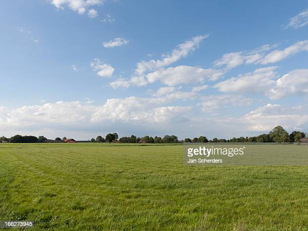Netherlands, Hilvarenbeek, Rural scenery
