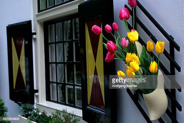 Netherlands Holland Near Amsterdam Keukenhof Gardens Wooden Shoe With Tulips