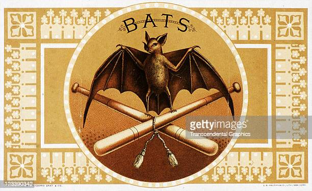 LE Neumann lithographers use a flying bat and a baseball bat to decorate the cigar label entitled Bats printed 1880s in New York City