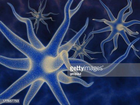 Neurons - 3d rendering