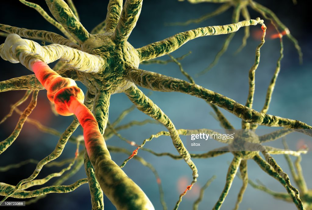 Neurons transmitting cellular signals